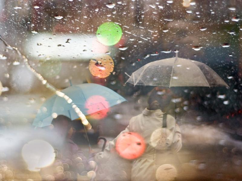 Небольшой дождь обещают морозовчанам в четверг, 21 марта