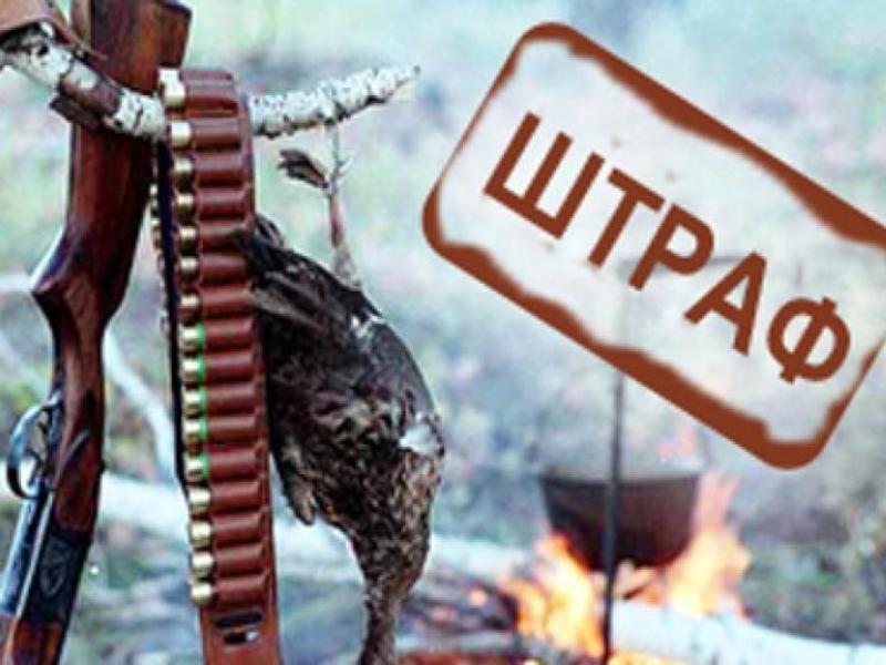 Штрафы на сумму более 1,5 миллионов рублей заплатят дончане за нарушение правил природоохраны