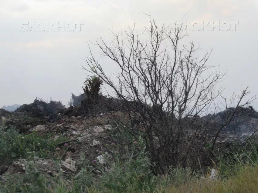 Свалка в Морозовске уже неделю не горит