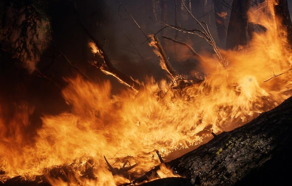 Чрезвычайная пожароопасность в Морозовске сохранится минимум до 11 сентября