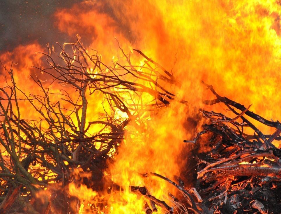Осторожно: в Морозовском районе снова чрезвычайная пожароопасность
