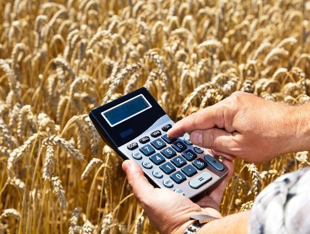 Сельхозпроизводителям Морозовска и всей России предложили новую систему налогообложения