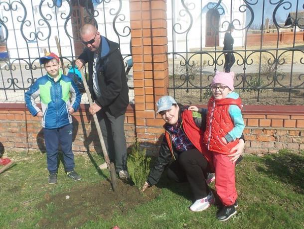 Восемнадцать деревьев высадили казаки Морозовско юрта и колектив школы №6 к областному Дню древонасаждения